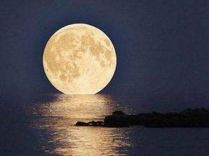 今夜は満月🌕